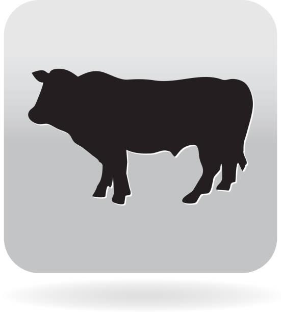 ilustrações de stock, clip art, desenhos animados e ícones de royalty-free de carne de vaca direccionar butcher churrasco ícone de cinzento - beef angus