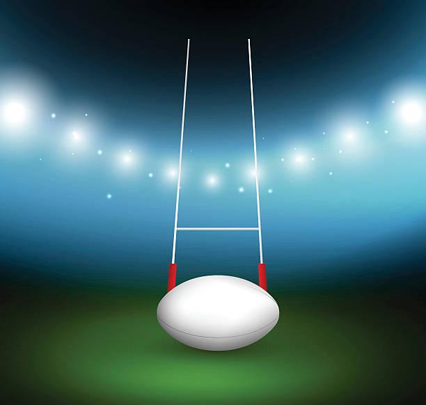 rugby-ball auf einem feld - rugby stock-grafiken, -clipart, -cartoons und -symbole