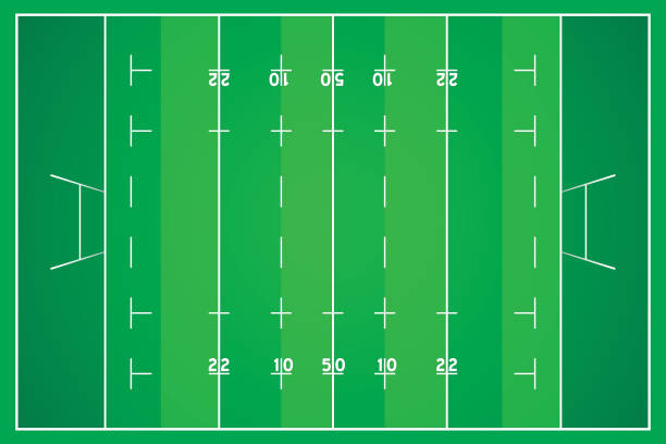 rugby ball Rugby field with marking from top view. rugby stock illustrations