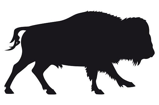 Running Bison Bull Silhouette