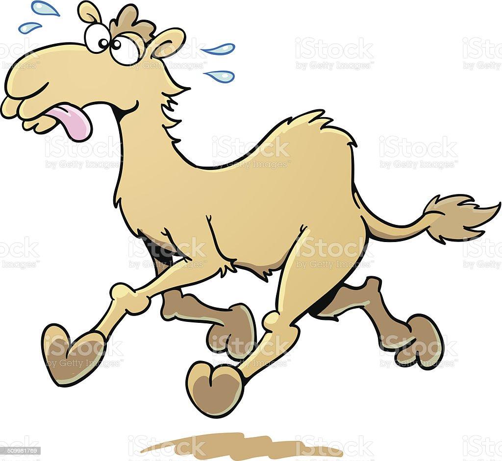Running Camel vector art illustration