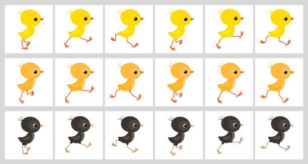 흰색 배경에 고립 된 화려한 닭 애니메이션 스프라이트 시트 실행 - gif stock illustrations