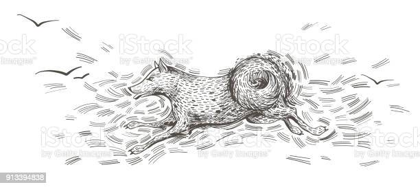 Running dog hand drawn character sketch vector id913394838?b=1&k=6&m=913394838&s=612x612&h=pkjlvy6chthqyztsuaktuiqrktpo4 kyvopv5smjz 0=