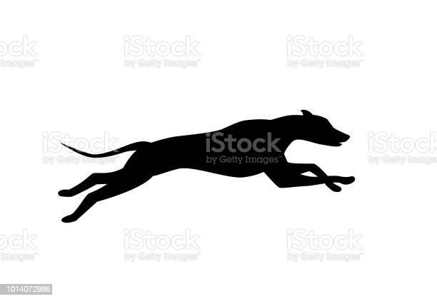 Running dog silhouette in black color vector vector id1014072986?b=1&k=6&m=1014072986&s=612x612&h=6kq73rljw6ztlrfhsmjmqsxwz2f evw9kc9g a5fz7a=