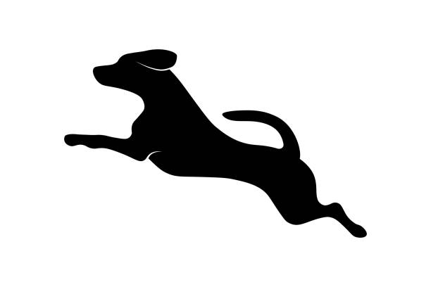Running dog Jumping running dog silhouette isolated on white background. Vector illustration jumping stock illustrations