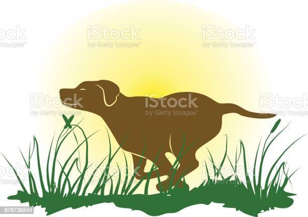 Running dog vector id678736544?b=1&k=6&m=678736544&s=612x612&h=qk2cepcdger5aimkckgnv8v1pto8l nxarlvuymz25m=
