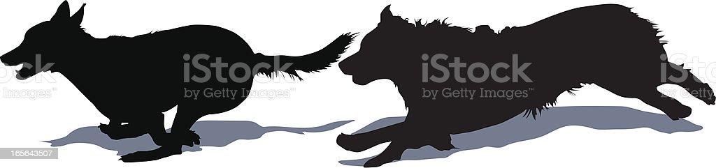 Running dogs vector art illustration