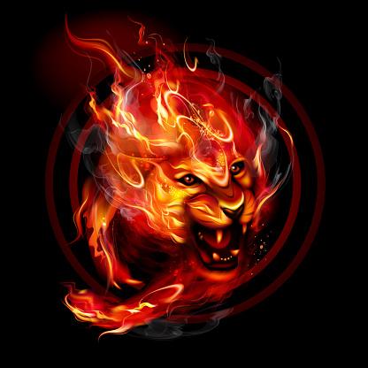 Running fire Lion