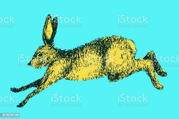 Running hare rabbit vector illustration hand drawn ink jumping bunny vector id875028106?b=1&k=6&m=875028106&s=612x612&h=ljnau4cn6dbr7e7f9h9nrrbyx77x8mqrg9a9yt60qxo=