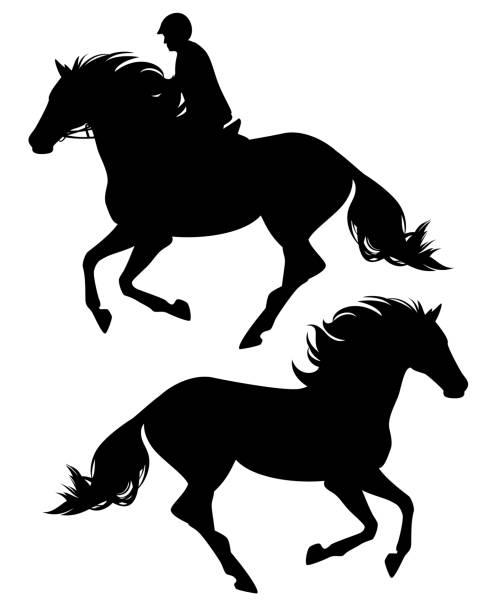 ausführen von pferd und reiter schwarz vektor silhouette - reiter stock-grafiken, -clipart, -cartoons und -symbole
