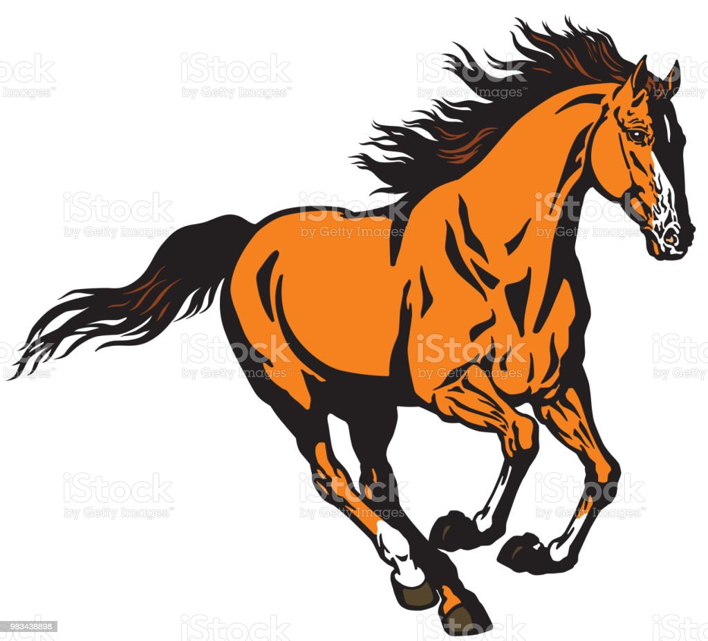 Running Horse In The Gallop Stock Illustration Download Image Now Istock