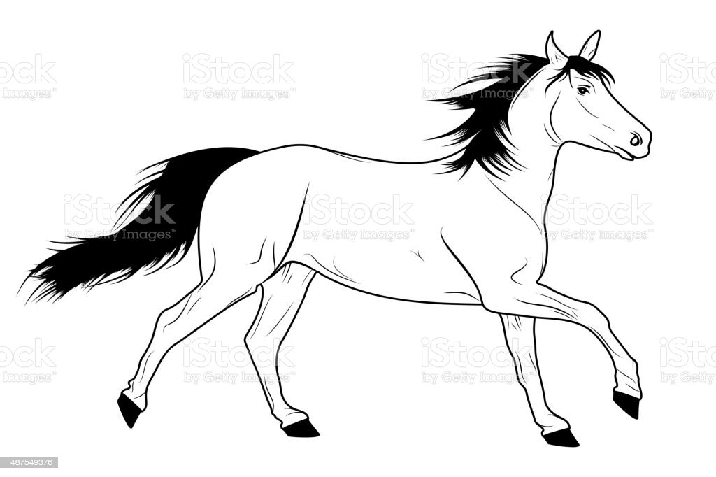 Running Horse Sketch Stock Illustration Download Image Now Istock
