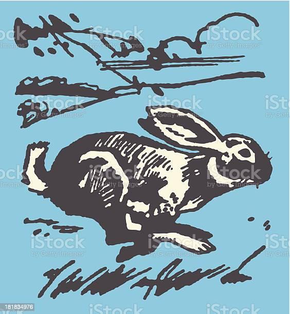Running rabbit vector id181834976?b=1&k=6&m=181834976&s=612x612&h=kuf jqs0sclmastiaumm93eqk2b34bysnpe8tyx8oha=