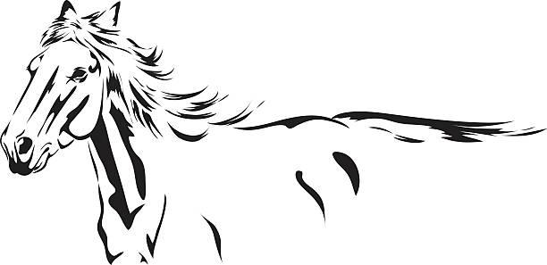 Running Stallion black Ink Sketch drawing isolated on white vector art illustration
