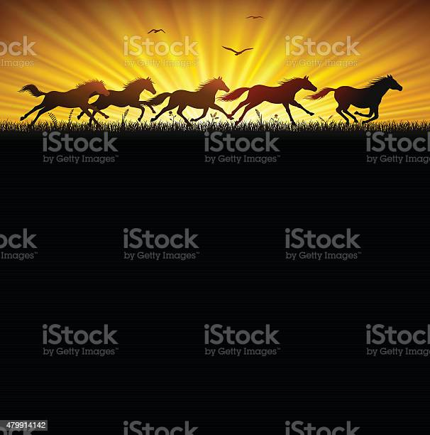 Running wild horses vector id479914142?b=1&k=6&m=479914142&s=612x612&h=sspiwstpi2h4xjdlbmo0iubuhs8ah54kzrodn bkqeu=