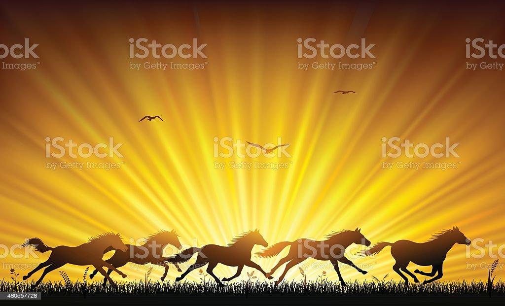 Running Wild Horses Stock Illustration Download Image Now Istock
