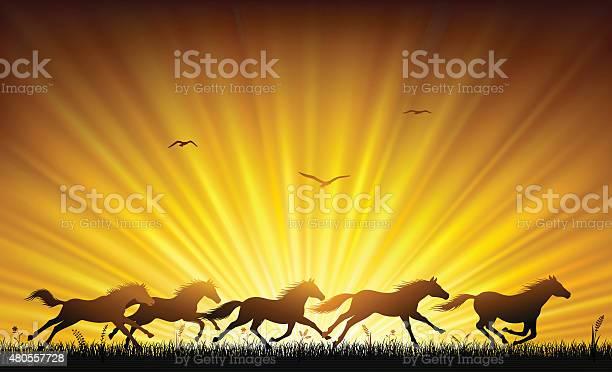 Running wild horses vector id480557728?b=1&k=6&m=480557728&s=612x612&h=tirw1ux 3ekdys8qo2zyse2esebilij0bei1u41xhmq=