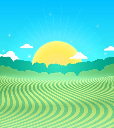 Rural Farm Field Landscape