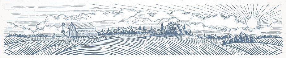 Rural hilly landscape with farm, in graphical style
