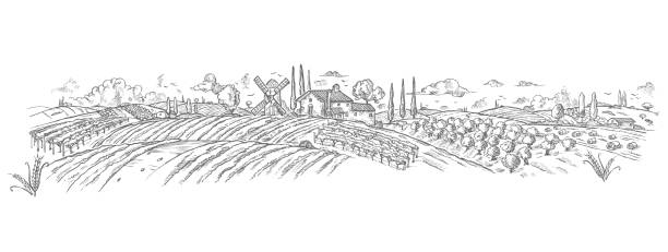 rural landscape Hand drawn with plant. Vector illustration vector art illustration