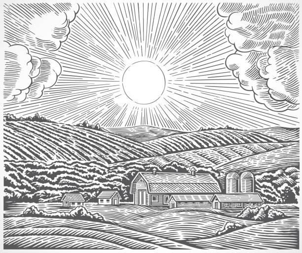 Rural landscape in engraving style. vector art illustration