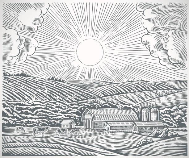 스타일 조각에서 농촌 풍경 - 농장 stock illustrations