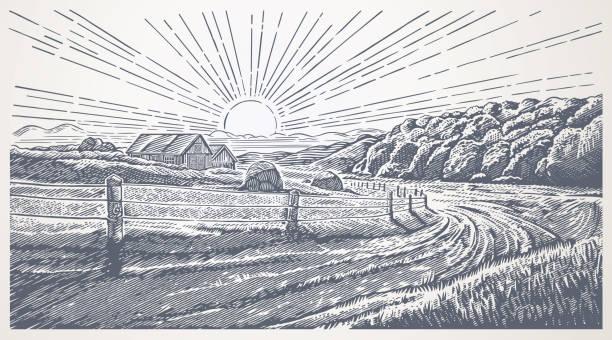 Rural landscape in engraving style vector art illustration