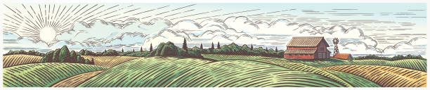 Rural landscape panoramic format with a farm. vector art illustration