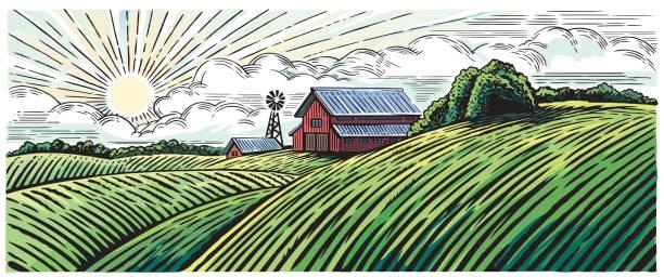 rural landscape - farm stock illustrations
