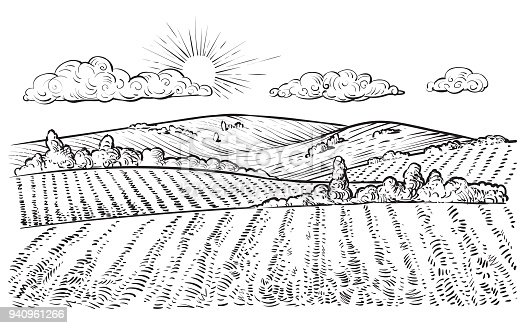 Rural landscape, vector vintage hand drawn illustration in engraving style. Peaceful farming scene with hills, meadows and pasturage.