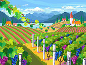 Rural landscape with vineyard, fields, mountain and sea panorama.