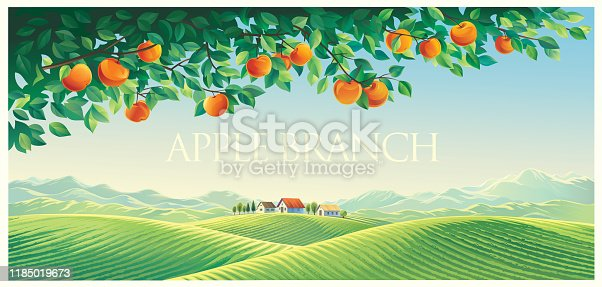 Rural landscape with mountains and hills as well as with a branch of an apple tree in the foreground.