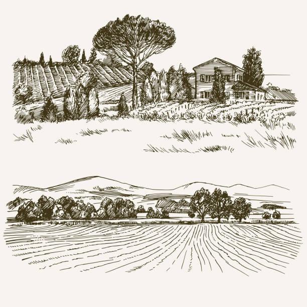 국가 집, 포도와 농촌 풍경입니다. - 농장 stock illustrations