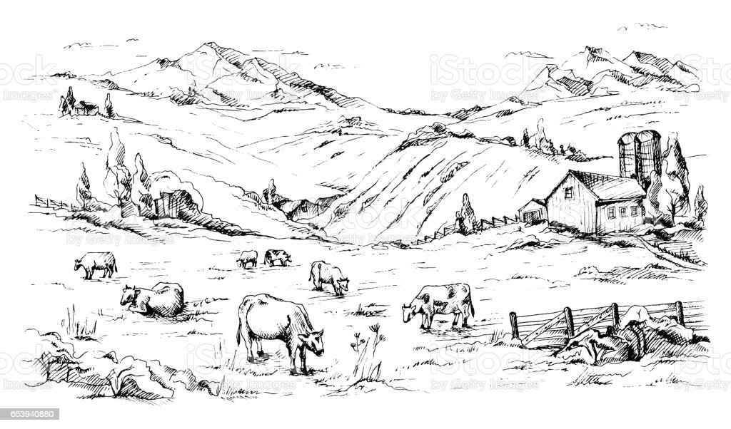 farm fence drawing. Rural Landscape With Cows And Farm Mountain Scenery Royalty-free Fence Drawing