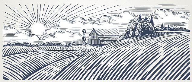 Rural landscape with farm