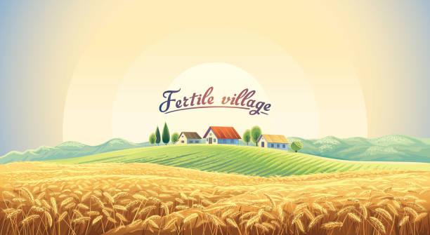 stockillustraties, clipart, cartoons en iconen met landschap met veld tarwe - wheat field