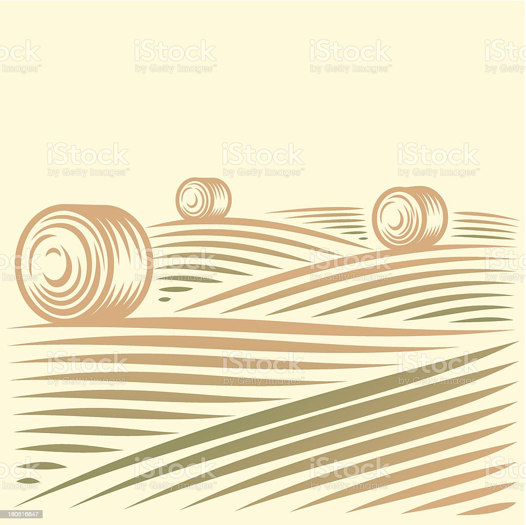 Rural landscape with fields and haystacks vector art illustration