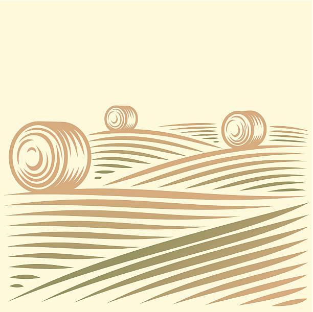 Ländliche Landschaft mit Feldern und haystacks – Vektorgrafik
