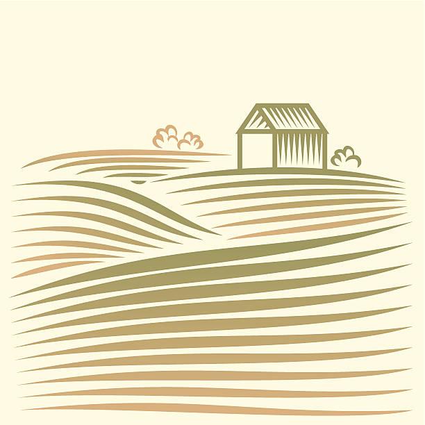 Ländliche Landschaft mit Feldern und house – Vektorgrafik
