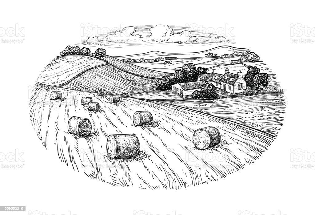 Rural landscape with hay bales. vector art illustration