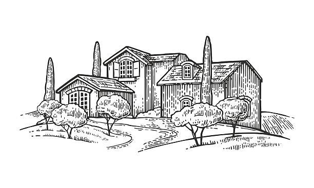 rural landscape with villa, farm with field, olive tree , cypress - villas stock-grafiken, -clipart, -cartoons und -symbole