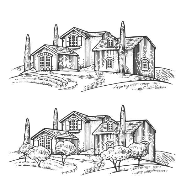 ländlichen landschaft mit villa oder bauernhof mit feld, olivenbäumen und zypressen - toskana stock-grafiken, -clipart, -cartoons und -symbole
