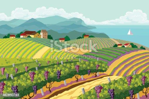 istock Rural landscape with vineyard. 462850743