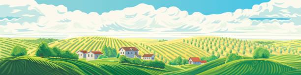 stockillustraties, clipart, cartoons en iconen met panorama landschap - boomgaard
