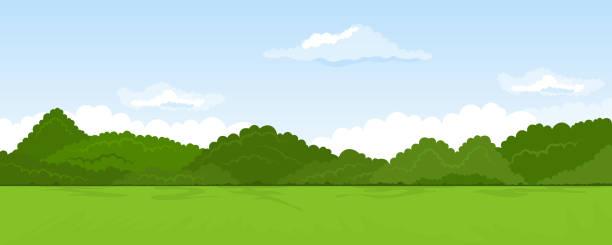 ilustraciones, imágenes clip art, dibujos animados e iconos de stock de paisaje rural de verano - paisajes de dibujos animados