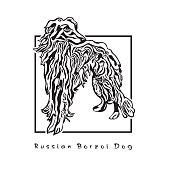 Russian Borszoi Dog Standing.