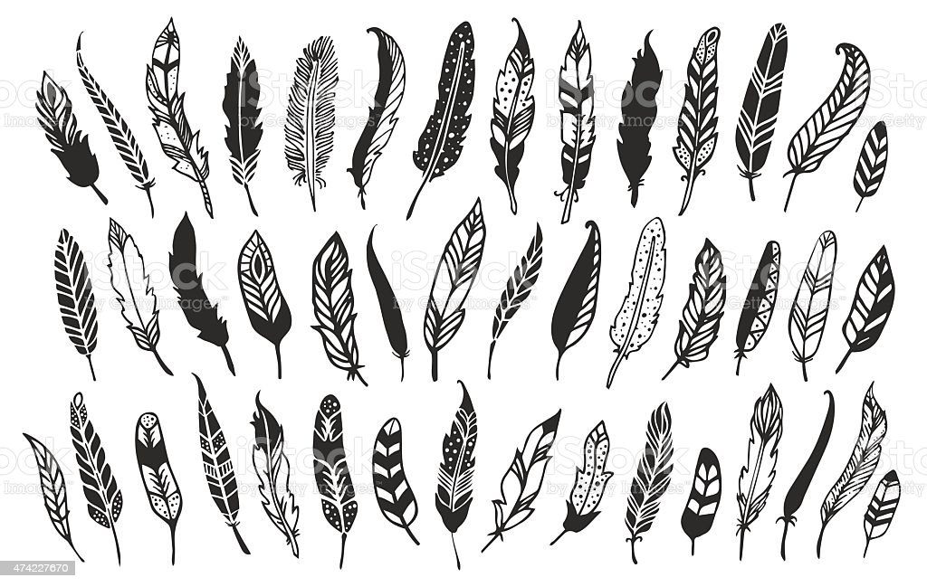 Rustic decorative feathers. vector art illustration