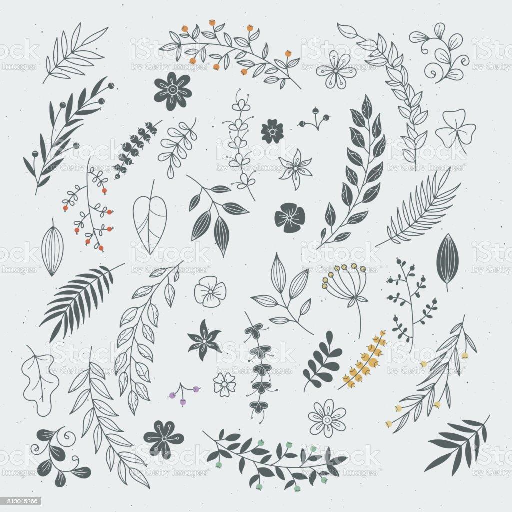 Ornamenti rustici disegnati a mano con rami e foglie. Cornici e bordi floreali vettoriali - arte vettoriale royalty-free di Ambiente