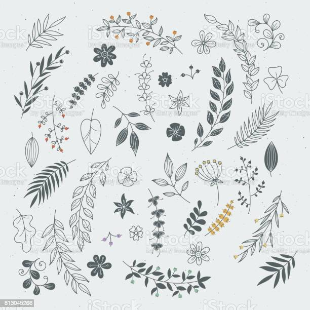 Rustic hand drawn ornaments with branches and leaves vector floral vector id813045266?b=1&k=6&m=813045266&s=612x612&h=azj3zbahp3dudwficflnysubwktmpyldf 4  rqsk5q=