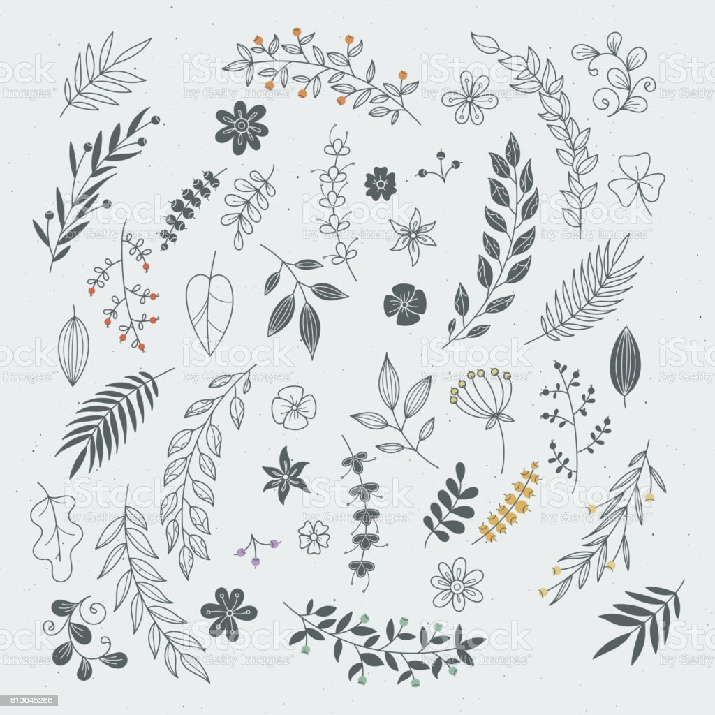 Rustic hand drawn ornaments with branches and leaves. Vector floral frames and borders vector art illustration